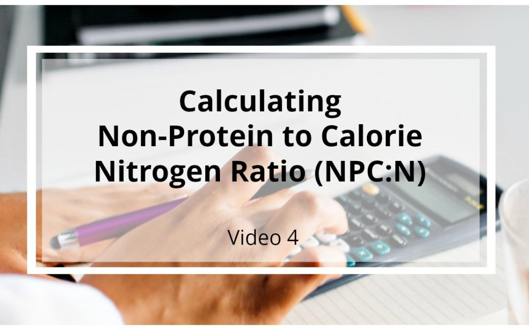VIDEO 4: Calculating Non-Protein Calorie to Nitrogen Ratio (NPC:N)